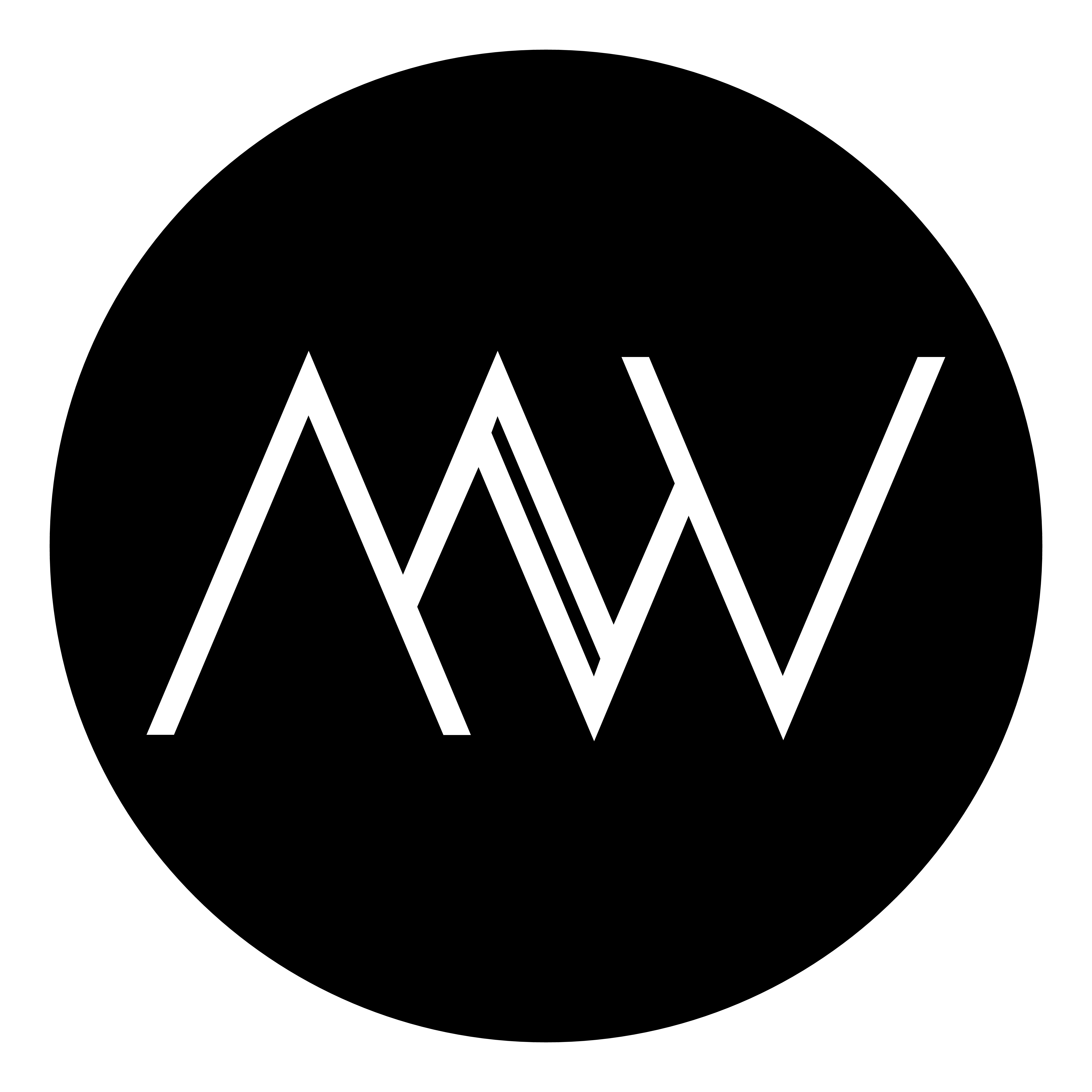 MW Skin Concept